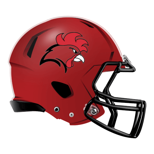roosters cocks gamecocks chickens fantasy football Logo helmet