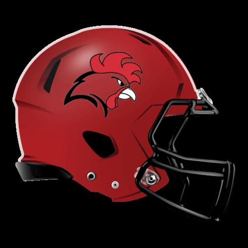 Image result for rooster football helmet