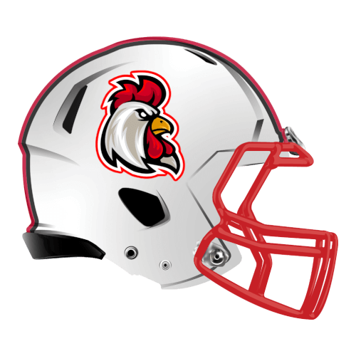 cock chicken roosters fantasy football Logo helmet