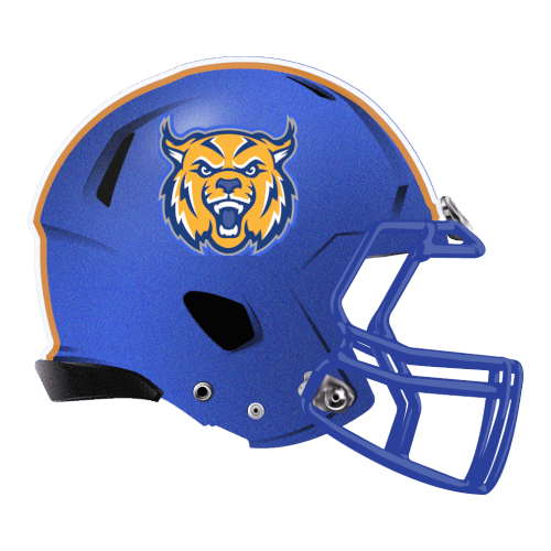 cats lynx wildcats  fantasy football Logo helmet