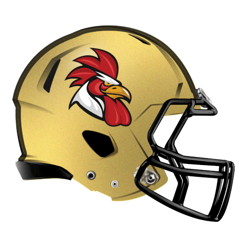 rooster chicken gamecock  fantasy football Logo helmet