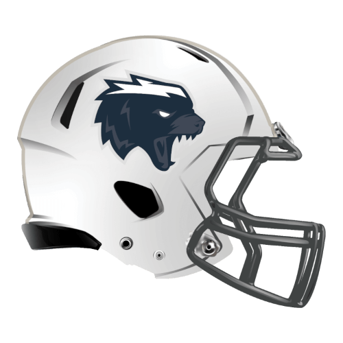skunk honeybadger fantasy football Logo helmet