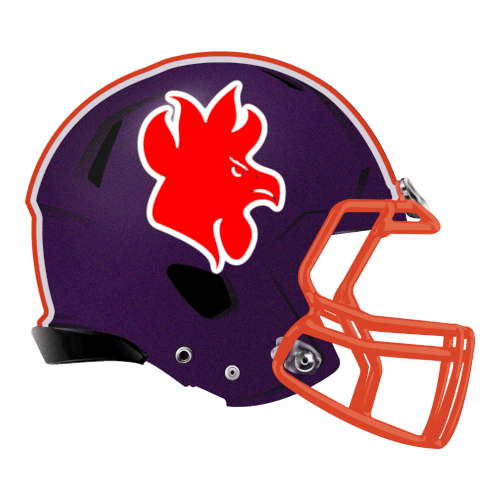 rooster gamecock chicken fantasy football Logo helmet