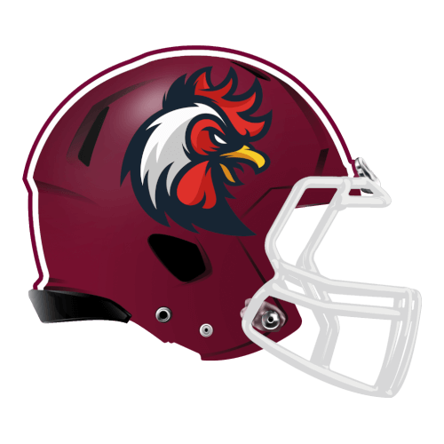 cock rooster chicken hen fantasy football Logo helmet