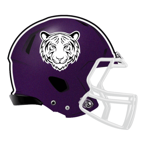 tiger white cat fantasy football Logo helmet