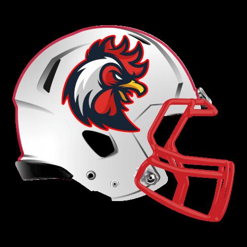 rooster fantasy football Logo helmet