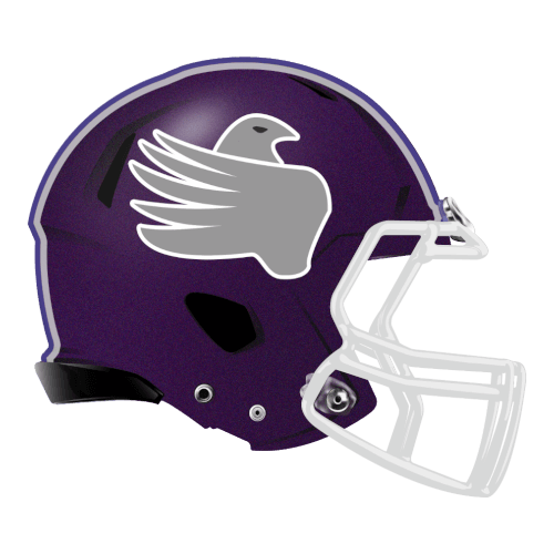 bird symbol fantasy football Logo helmet
