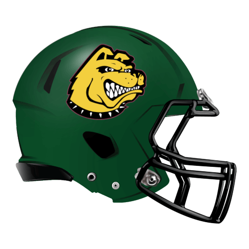 doggy canine labador fantasy football Logo helmet